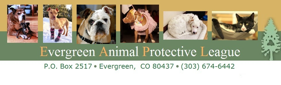Evergreen Animal Protective League